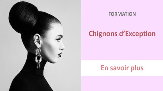 formation chignons exception